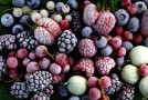 o-frozen-berries-facebook